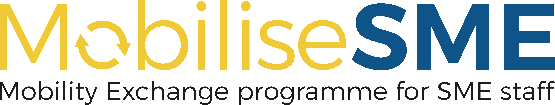 Projekt: MobiliseSME
