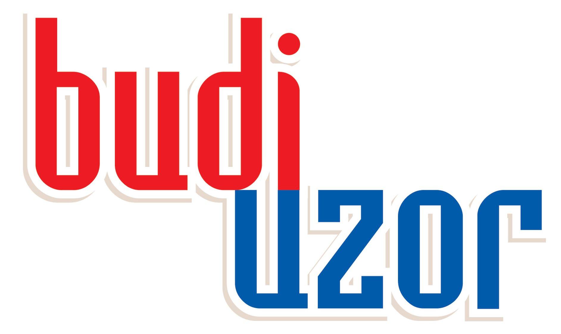 Projekt: BudiUzor