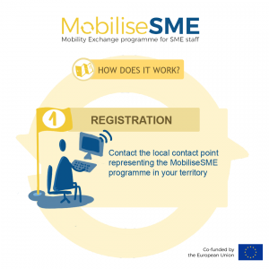 MobilseSME: How does it work?