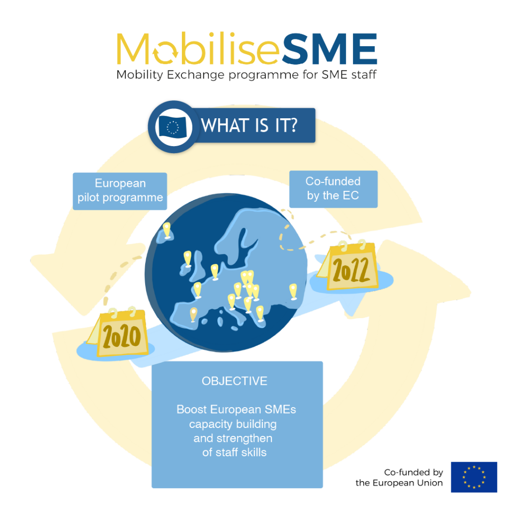 MobilseSME: What is it?